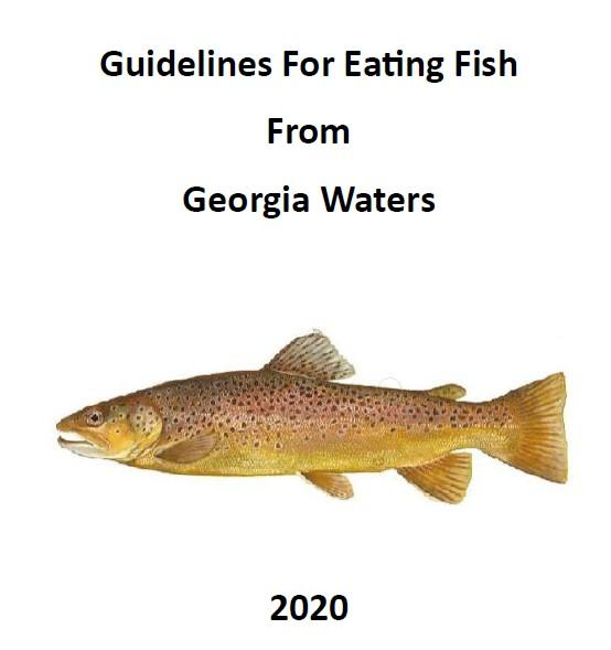 Guidelines For Eating Fish From Georgia Waters 2020