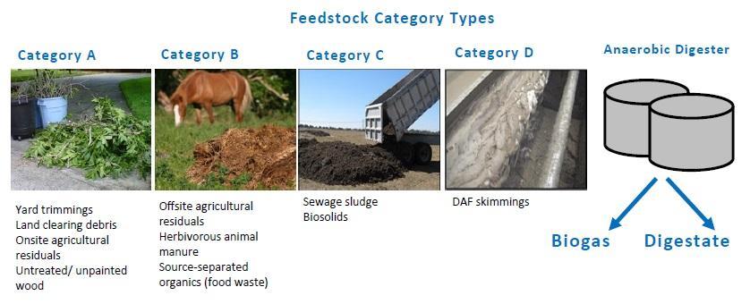 Anaerobic Digestion Feedstock