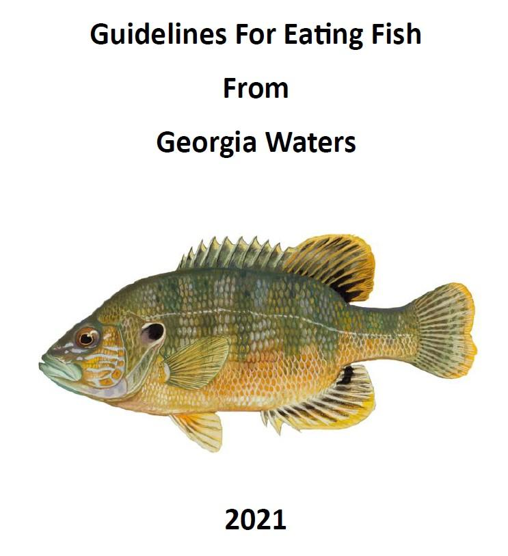 Guidelines For Eating Fish From Georgia Waters 2021