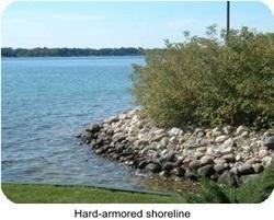 hard-armored shoreline_resized.jpg