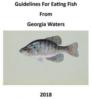 2018 FCG Book Cover_0.JPG