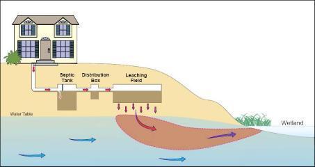 septic leak diagram_0.jpg