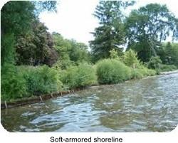 soft-armored shoreline_resized.jpg